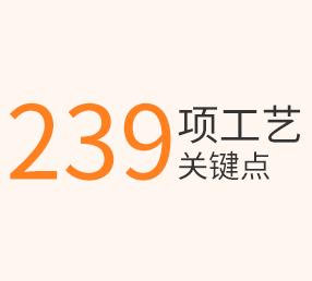 293项工艺 关键点